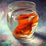 1086_Goldfish_300dpi_smcopy